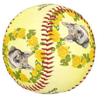 Swedish Vallhund Rock!! and Yellow Roses Softball