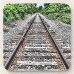 """Sweedler Preserve Rail Drink Coaster<br><div class=""""desc"""">Sweedler Preserve Rail Upstate New York Finger Lakes Trail</div>"""