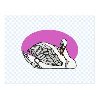 Sweemer Swan Postcard