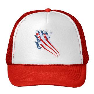 Sweeping American Flag Hat