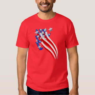 Sweeping Old Glory T Shirt