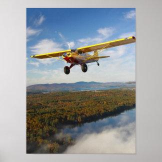 Sweeps Husky Over Maine Lake Posters