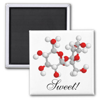 Sweet! 2 Inch Square Magnet