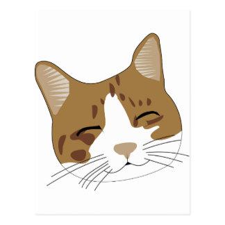 sweet, a happy cat cat postcard
