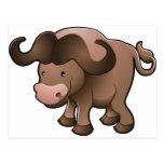 Sweet African cape buffalo Postcard