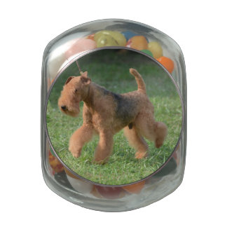 Sweet Airdale Terrier Glass Candy Jars