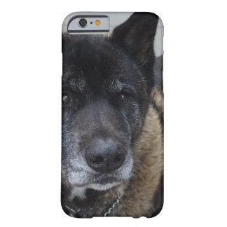 Sweet Akita Dog iPhone 6 Case