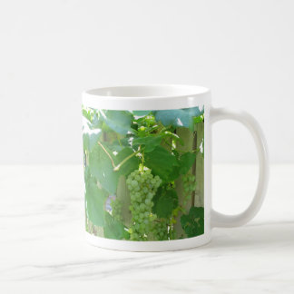 Sweet and Juicy White Seedless Grapes Mugs