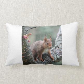 Sweet Animal Throw Pillows