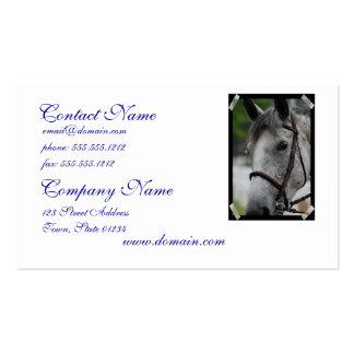 Sweet Appaloosa  Business Cards