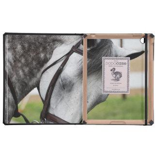 Sweet Appaloosa Horse iPad Cover