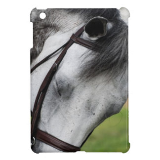 Sweet Appaloosa Horse iPad Mini Cases