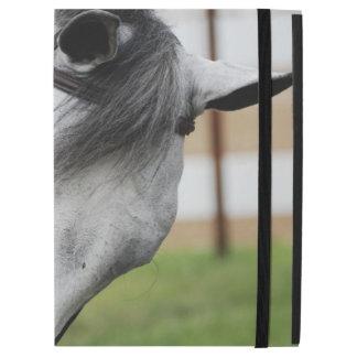 Sweet Appaloosa Horse iPad Pro Case