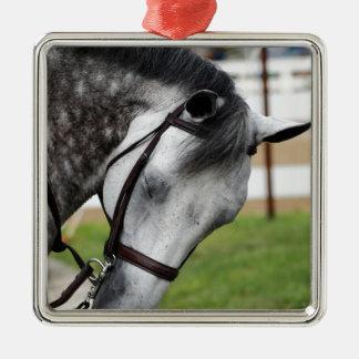 Sweet Appaloosa Horse Metal Ornament