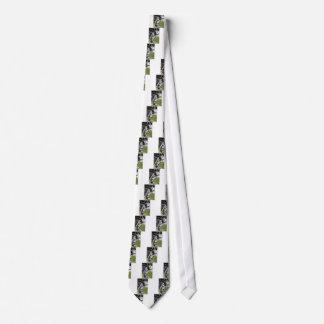 Sweet Appaloosa Horse Neck Tie