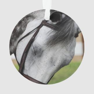 Sweet Appaloosa Horse Ornament