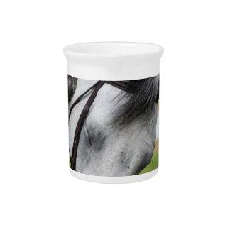 Sweet Appaloosa Horse Pitchers