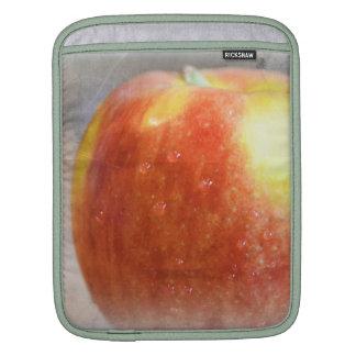 Sweet Apple iPad Sleeves
