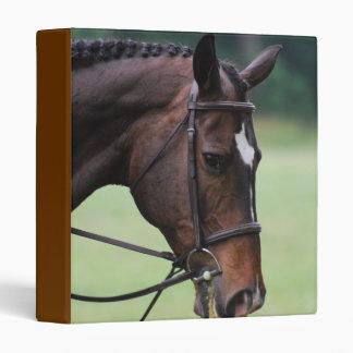 Sweet Arab Horse Binder