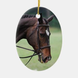 Sweet Arab Horse Ornament