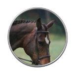 Sweet Arabian Horse Candy Tins