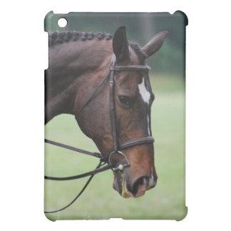 Sweet Arabian Horse iPad Case