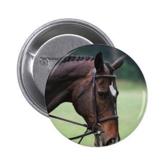 Sweet Arabian Horse Pin