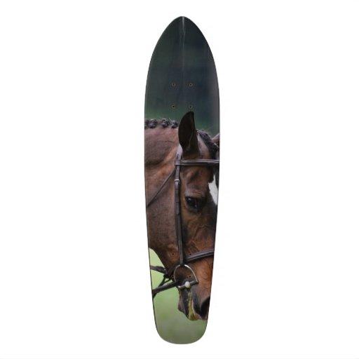 Sweet Arabian Horse Skateboard