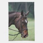 Sweet Arabian Horse Towel