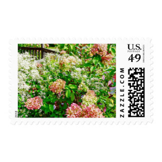 Sweet Autumn Clematis and Pink Hydrangea Postage