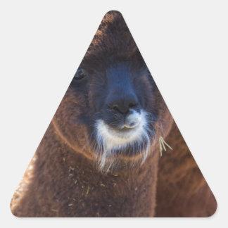Sweet Baby Alpaca - Vicugna pacos Triangle Sticker
