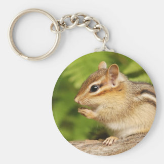sweet baby chipmunk with snack key chain