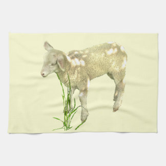 Sweet Baby Lamb on Yellow Kitchen Towel