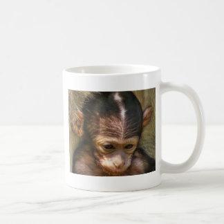 Sweet baby Monkey Classic White Coffee Mug