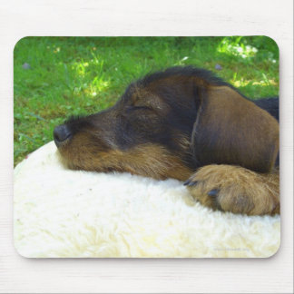 Sweet Baby Mouse Pad
