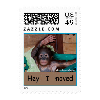 Sweet Baby Orangutan  Change of Address Stamps