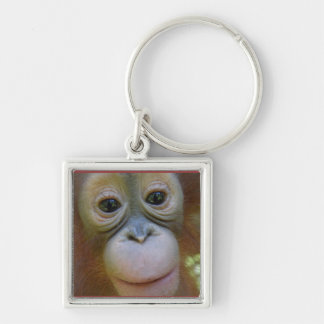 Sweet Baby Orangutan Face Silver-Colored Square Keychain