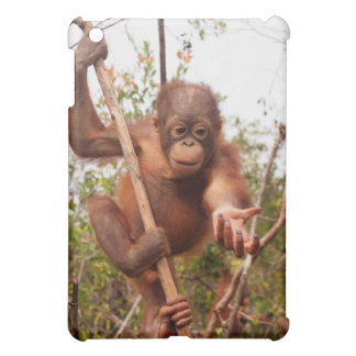 Sweet Baby Orangutan Mason Cover For The iPad Mini