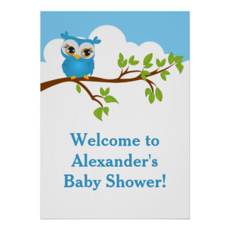 Sweet Baby Owl Boy Baby Shower Poster