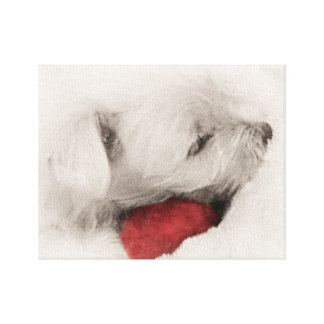 Sweet Baby Westie Sleeping Canvas Print