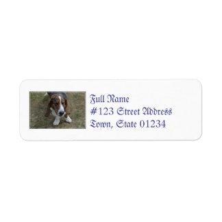 Sweet Basset Hound Label