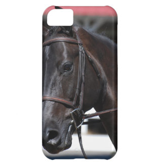 Sweet Bay Horse iPhone 5C Cases