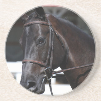 Sweet Bay Horse Drink Coasters