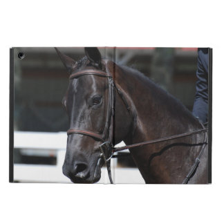 Sweet Bay Horse iPad Air Case