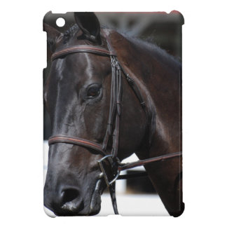 Sweet Bay Horse iPad Mini Cover