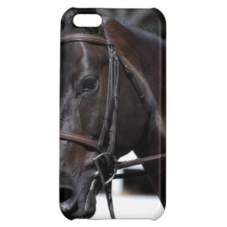 Sweet Bay Horse iPhone 5C Case