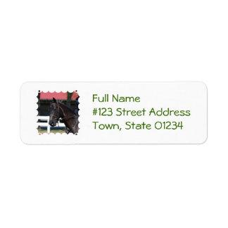 Sweet Bay Horse Return Address Labels