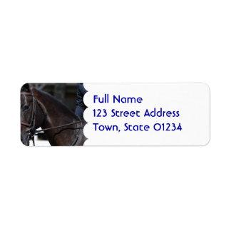 Sweet Bay Horse Return Address Label