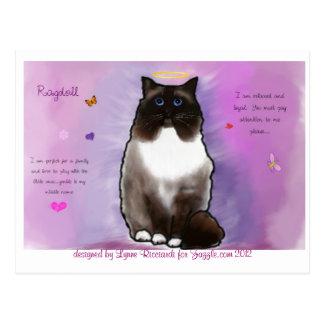 Sweet Beautiful Ragdoll Post Card