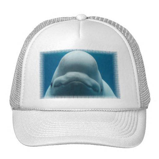 Sweet Beluga Whale  Baseball Hat